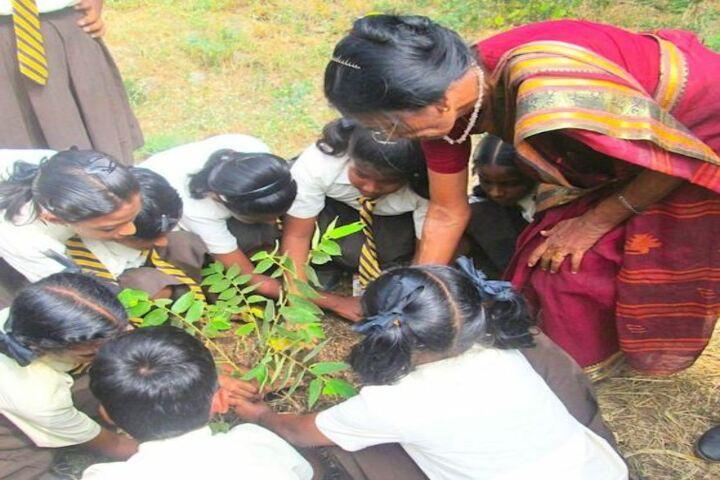 Keswick Public School-World Environment Day