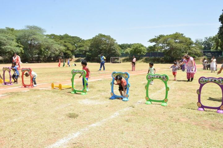 The Grove School-Annual Sports Meet