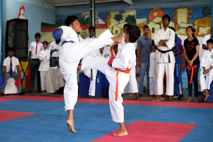 Vaels International School-Karate