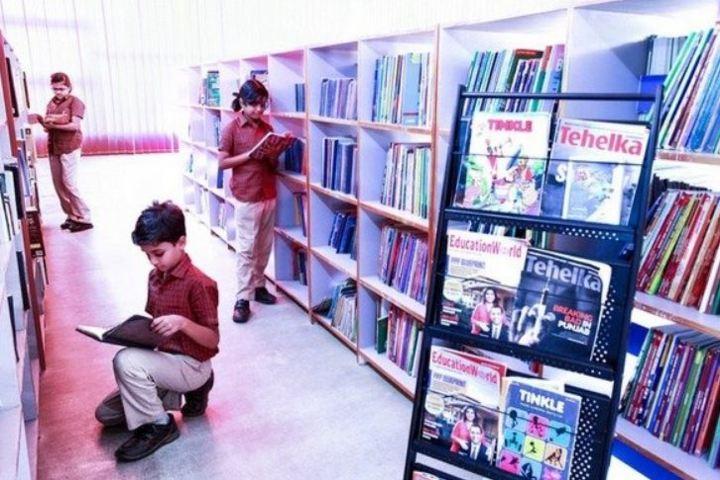 The Little Kingdom Senior School-Library