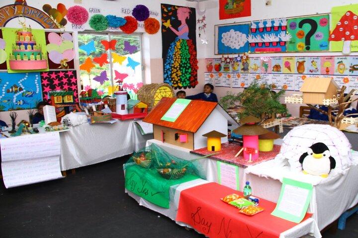Crescent Castle Public School-Science Expo