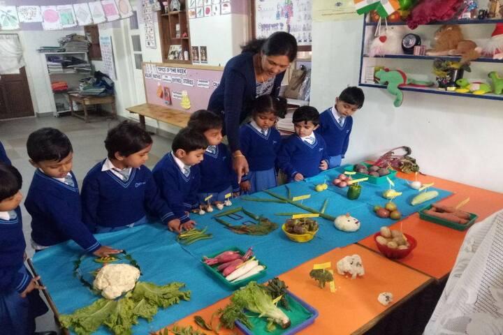 Crescent Castle Public School-Vegetable Carving