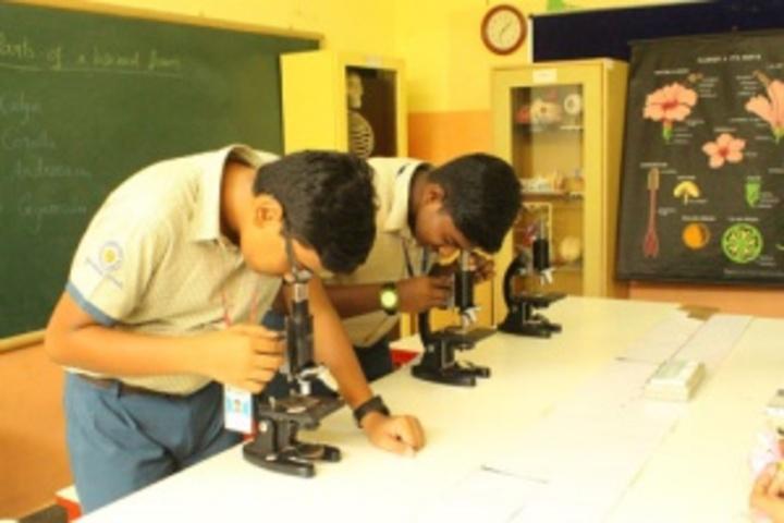 Primrose Schools-Biology Lab