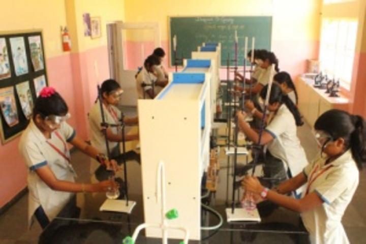 Primrose Schools-Chemistry Lab