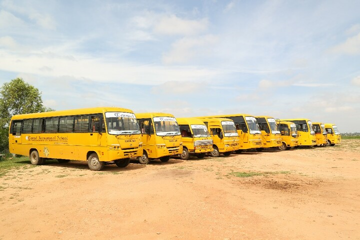Carmel International School-School Transport
