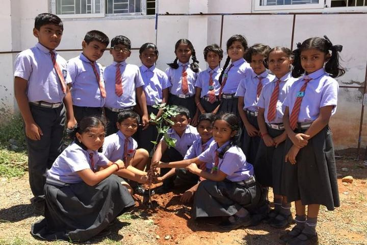 M G V Global Academy-Plantation