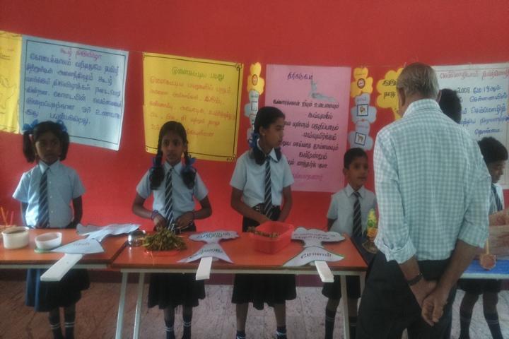 Santa Maria Academy International School-School Exhibition