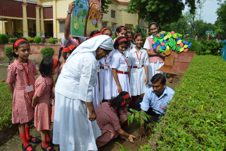 St Anthonys Junior College-Plantation