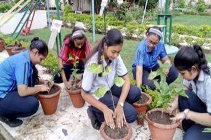 City Montessori Inter College-Plantation