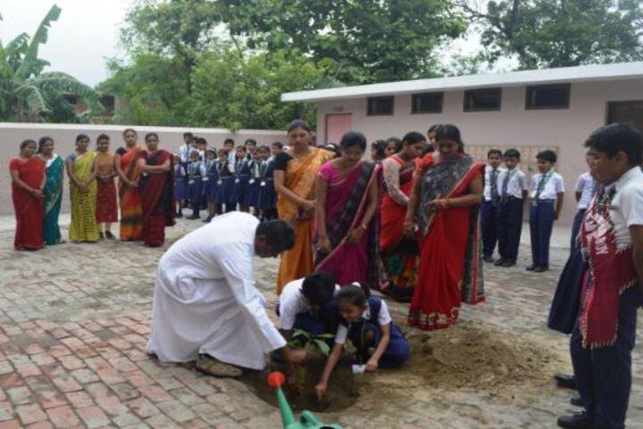 St Thereses School-Tree Plantation
