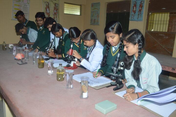 K C Convent Co Ed School-Biology Lab