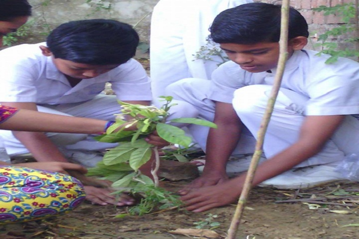 Global Convent School-Plantation