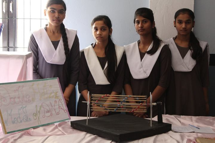 Lucknow Model Public Inter College-Science Exhibition