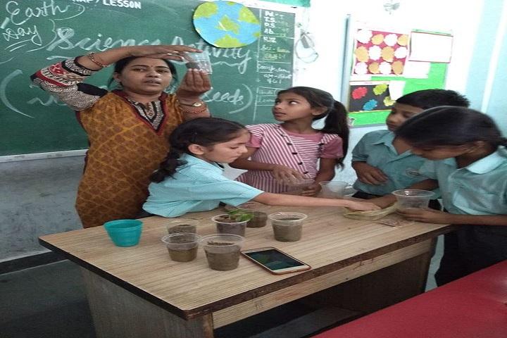 Sun Shine Public School-Science Activity