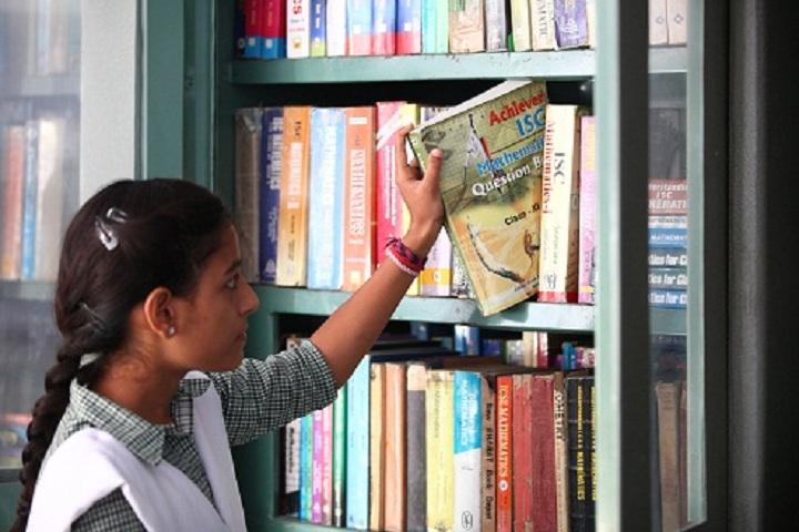 Modern School-Library