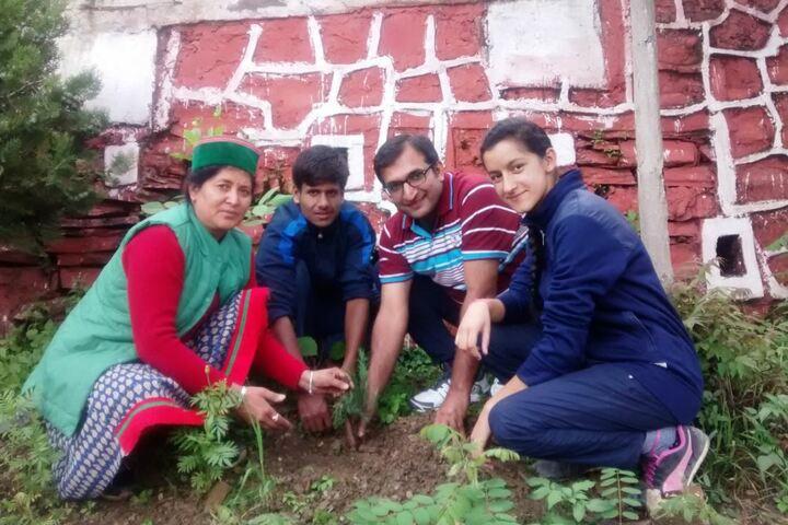 Jawahar Navodaya Vidyalaya No 2-Planting Tree