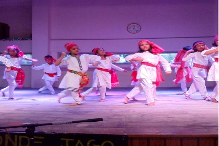 Sri Ram Narayan Singh Memorial High School-Dance Performance