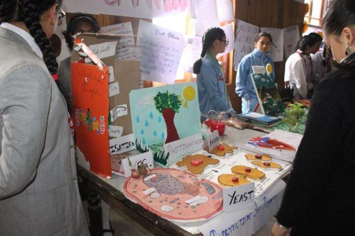 Loreto Convent School-Science And Art Exhibition
