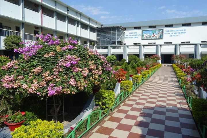 Don Bosco School-Garden