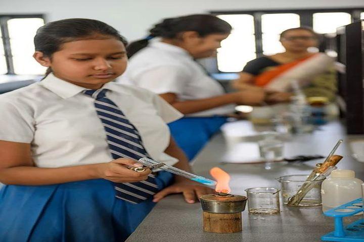 Nirmala Convent School-Chemical Lab