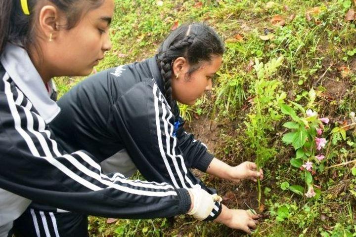 Gyanoday Niketan-Planting Tree