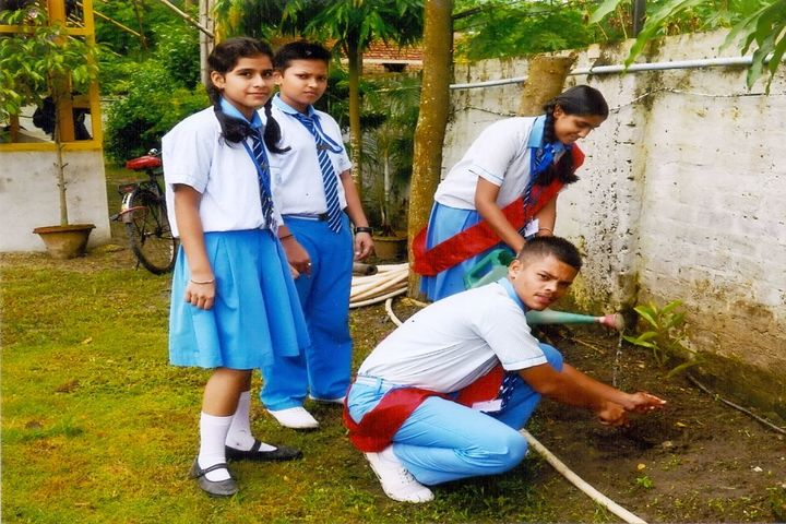 Stepping Stone School-Environmental Day