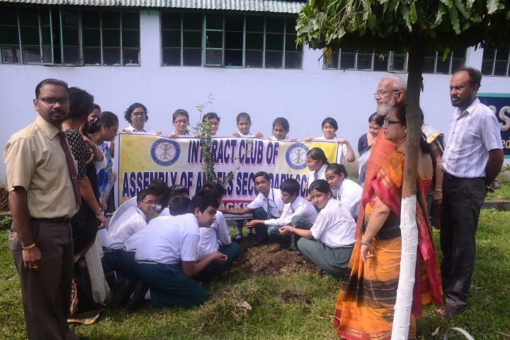 Assembly Of Angels Secondary School-Plantation