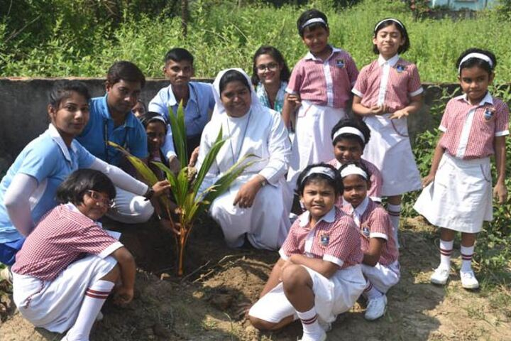 St JosephS School-Plantation""