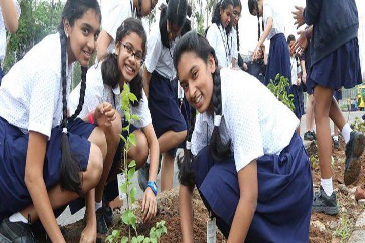 CHIREC International School-Tree Day