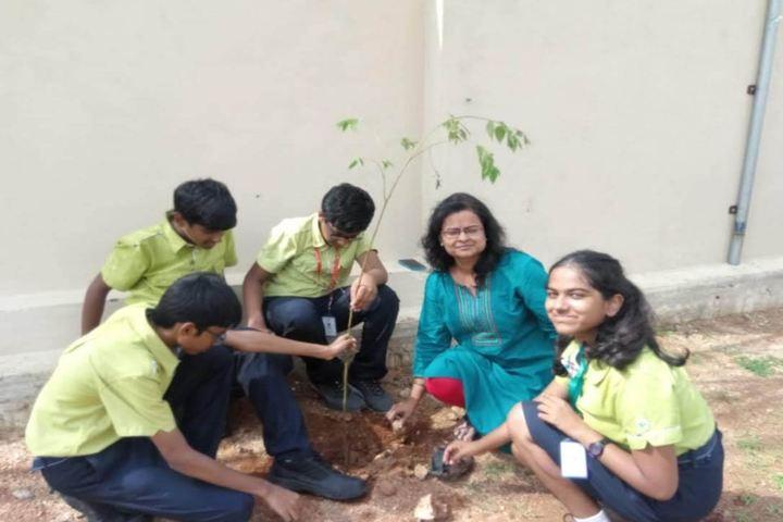 Epistemo Vikas Leadership School-Epistemo Vikas Leadership School-Epistemo Vikas Leadership School-Tree Plantation