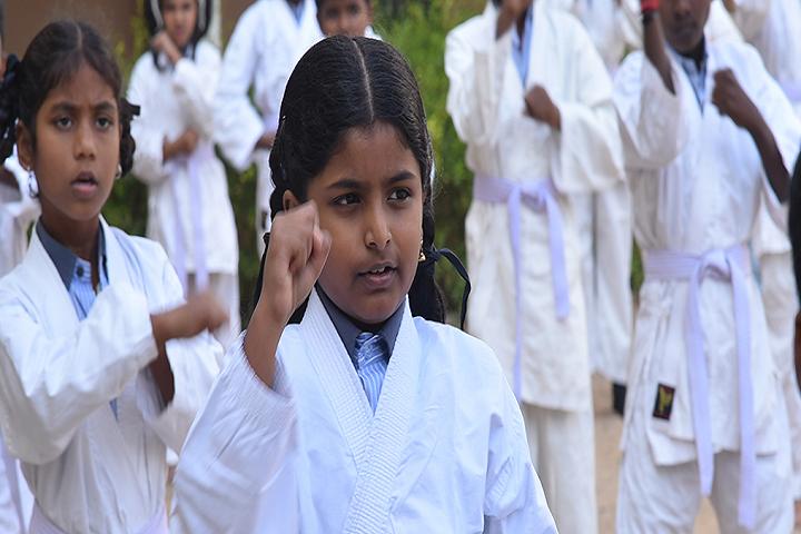 Dhanish Matriculation Higher Secondary School-Karate