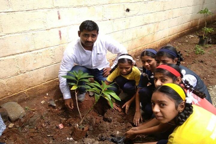 Wonderland English Medium School-Tree Plantation