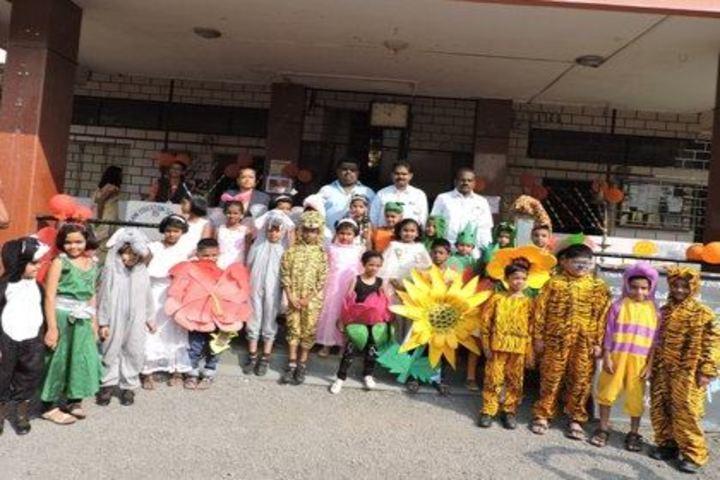 New English School and Junior College-Fancy Dress