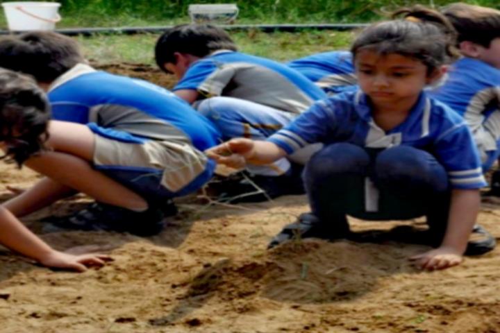 Kunskapsskolan International School-Agronomy