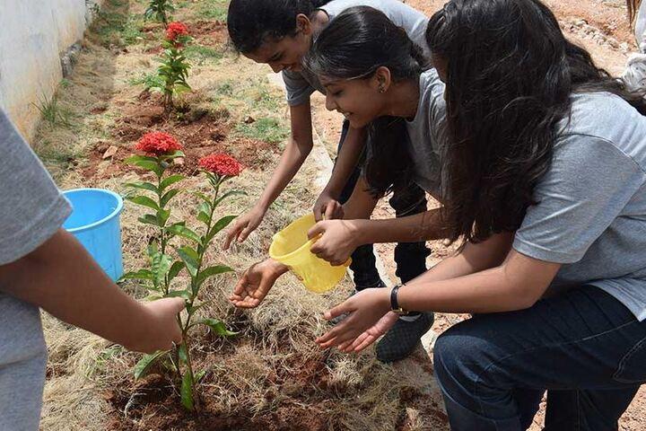 Elate International School-Tree Plantation