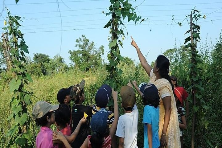 Gurukul the Day School-Botanical Garden