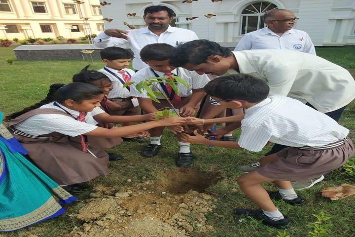 National Public School-Plantation
