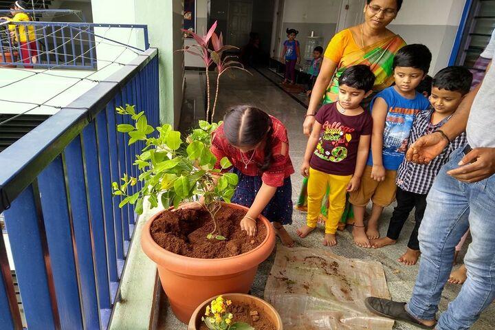 Pragnya Montessori School-Plantation