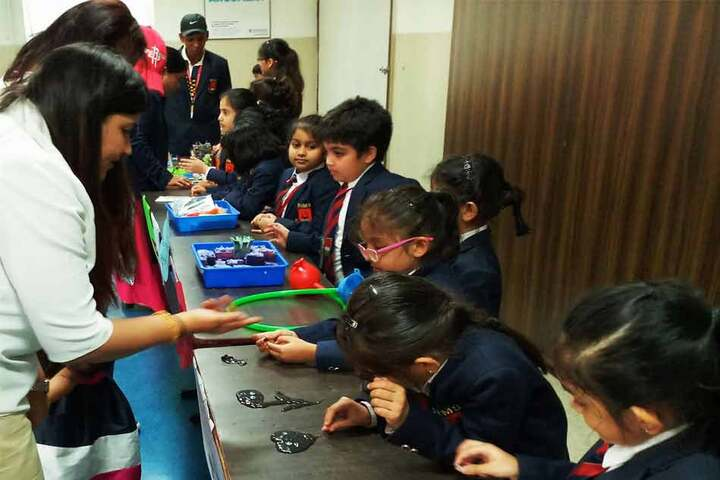 RIMS International School and Junior College-Discovery World