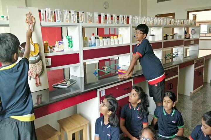 Sancta Maria International School-Labs