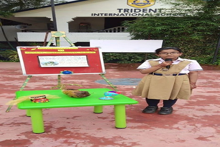 Trident International School- Story Telling Competition