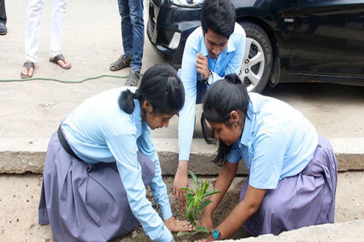 Assam Jatiya Bidyalay-Tree Plantation