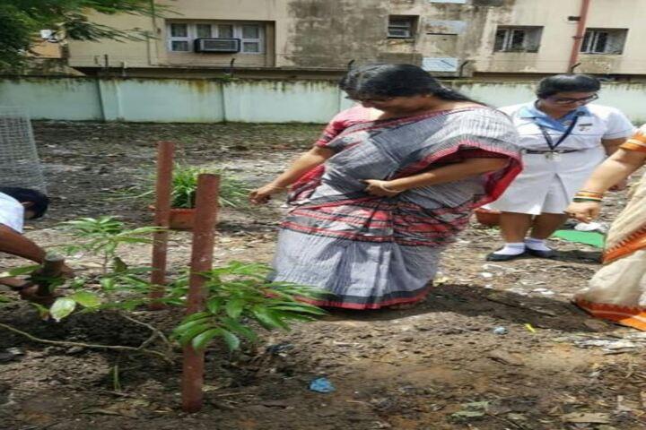 St Johns Diocesan Girls Higher Secondary School-Planting Tree