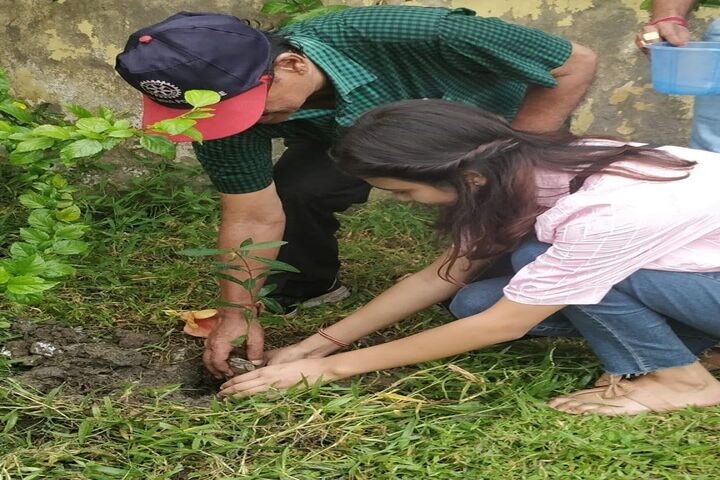 Techno Model School-Tree Plantation