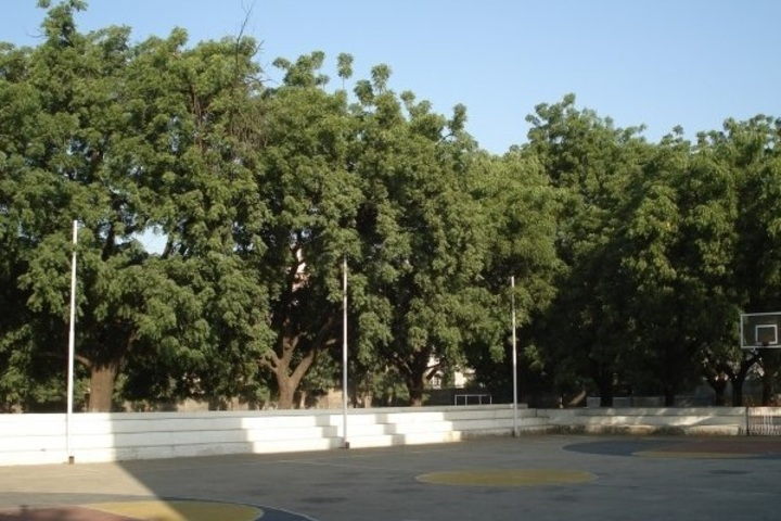 St Xaviers High School-Play Ground