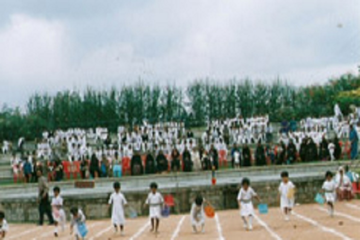 AI-Ameen Primary and High School-Sports Day Celebration