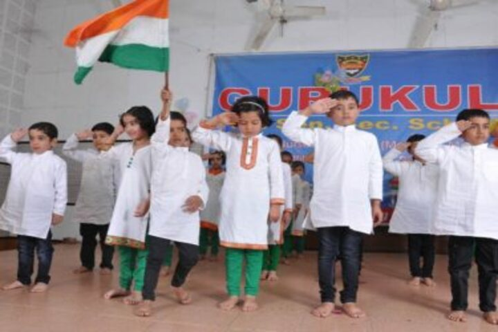 Gurukul Public Senior Secondary School-Independance Day