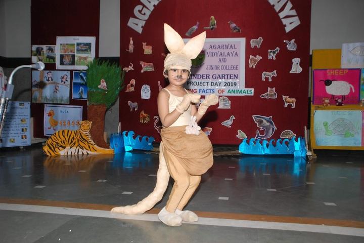 Agarwal Vidyalaya and Junior College-Fancy Dress