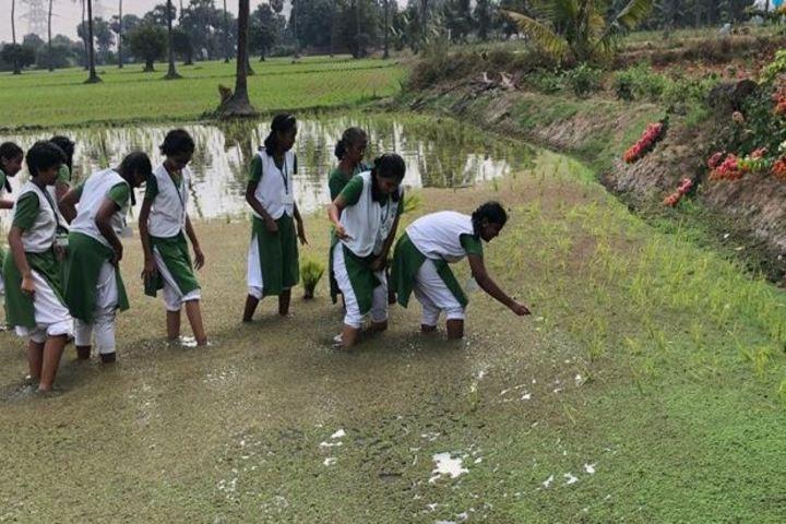 Vana Vani Matriculation Higher Secondary School-Field Trip