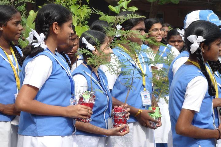 Christ King Girls Higher Secondary School-Environmental Day